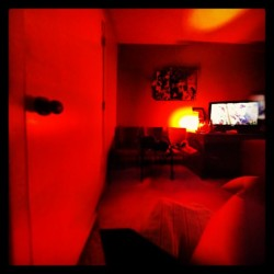 Just very weird #perception #depth #warped #door #room #red #window #what #weird #askew #rabbithole    #shesweird