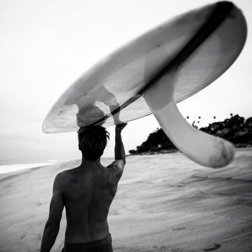 surf-visions:  s u r f ~ v i s i o n s
