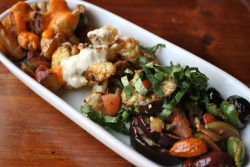 Appetizer Plate: Mixed Warmed Almonds & Olives, Patas Bravas, Roasted Cauliflower with Garlic Aioli, & Grilled Eggplant in Tomato Vinaigrette