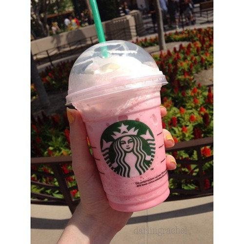 darlingrachel:  Cotton Candy Frappuccino + Disneyland = perfect day! 🎀 follow me on Instagram for more of my photos! @darlingrachel (at Disney California Adventure Park)