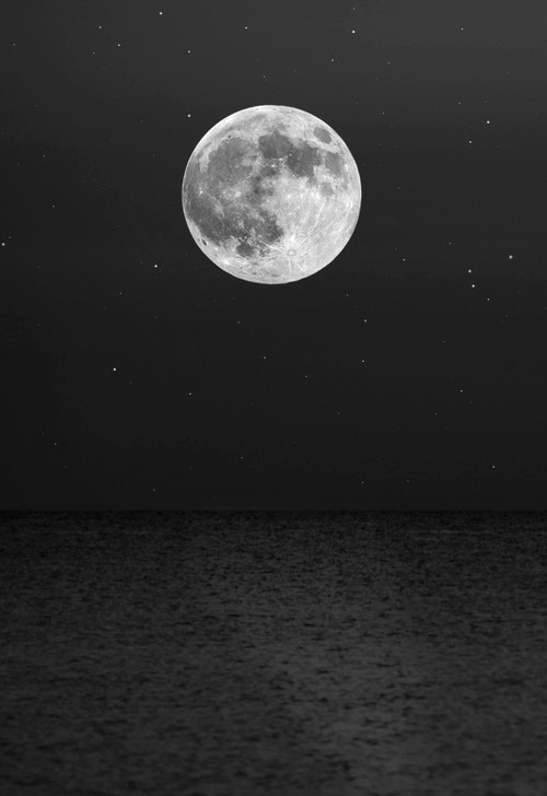 sincerelyhapiness:  Follow for all black&white posts !!  Oooh full moon this Thursday!  Maybe baby will decide to come out…