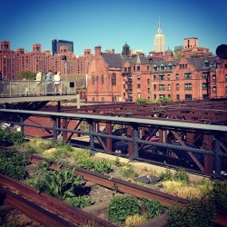 #nyc #highline #empirestate  (at High Line)