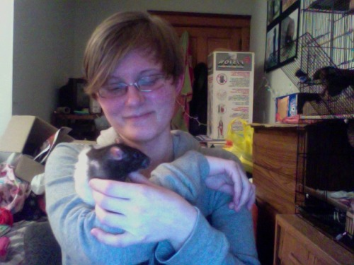 An old photo, but a cute one. Featured is my beloved rattie, Maxine Mae, who was my very first rattie! I took this in either December 2012 or in January of this year. Either way, it was before she sadly passed away January 31st. I still think about you every day, my little girl. I love you, Maxxie Moo! Just look at that sweet little pile of rattie cutene