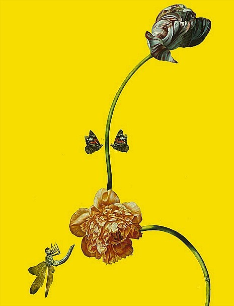 stilllifequickheart:  Mark Fairnington Flirt: Double Butterfly, detail 1997-99