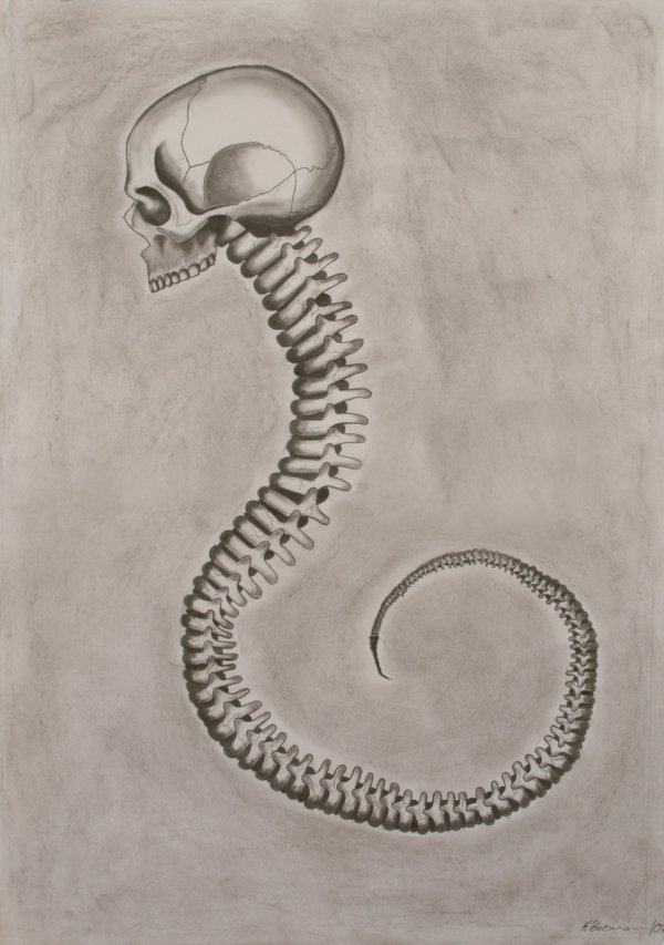 2headedsnake:  Little Seahorse by sidh-art pencil, coal, ink