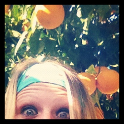 Creeping in an Orange Tree😁😳🍊