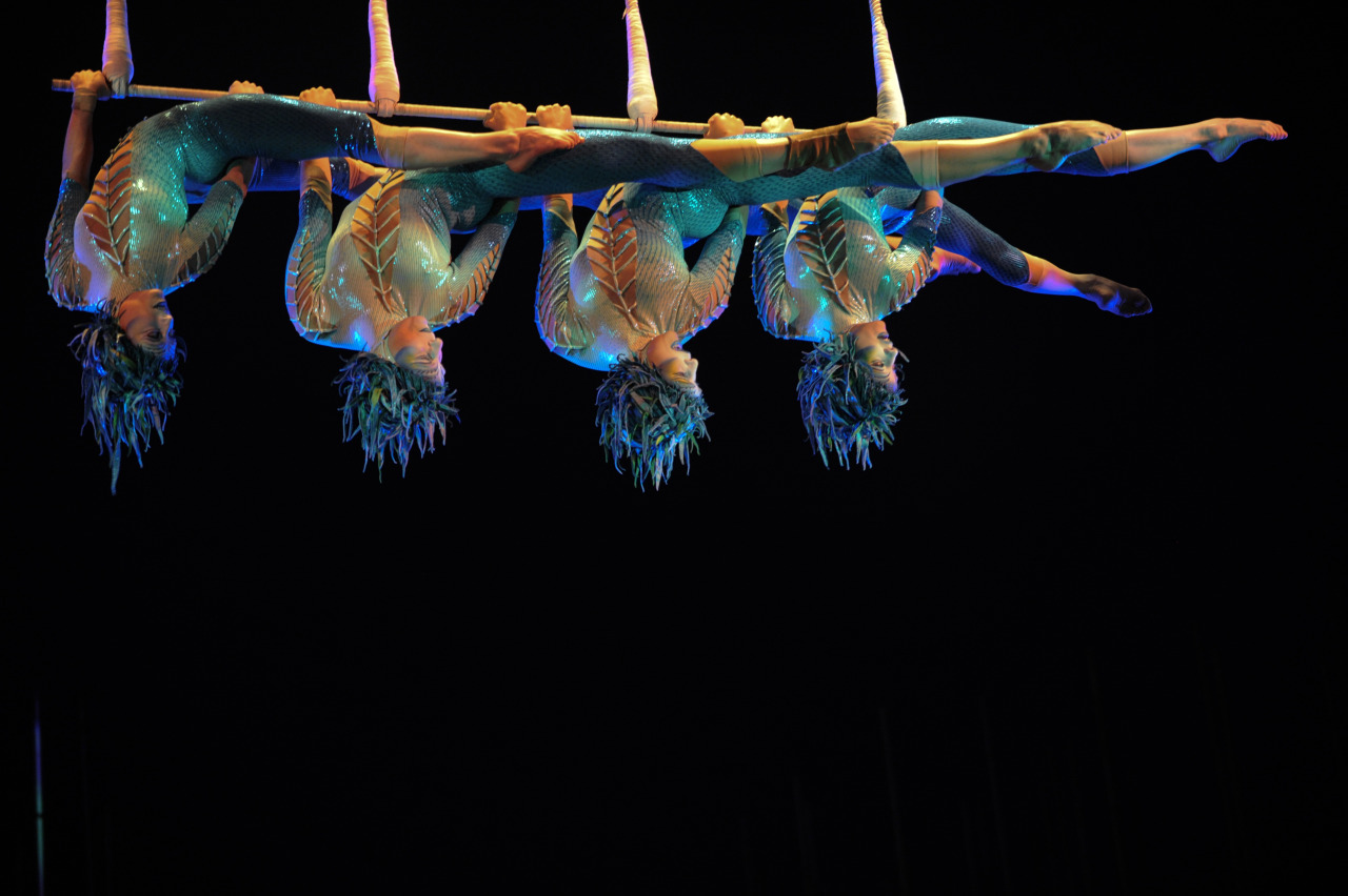 "nationalpostphotos:  Artists of the circus show 'Cirque du Soleil' perform during their show ""Varekai"" on March 20, 2013 in Bogota, Colombia. EITAN ABRAMOVICH/AFP/Getty Images"