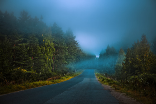 the road to nowhere … (by dSavin)