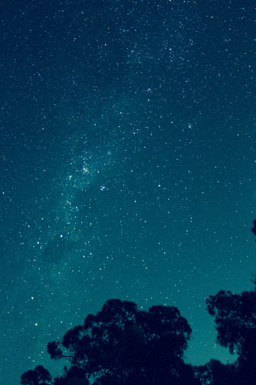 theoceanandthenight:  luciasnaps:  the stars last night.   1000 notes on my own photography. i am happy