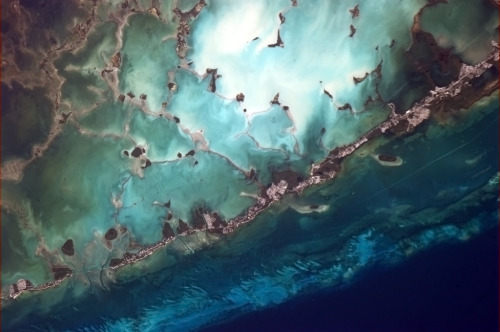 Florida Keys looking very fragile, via Col Chris Hadfield on the ISS.