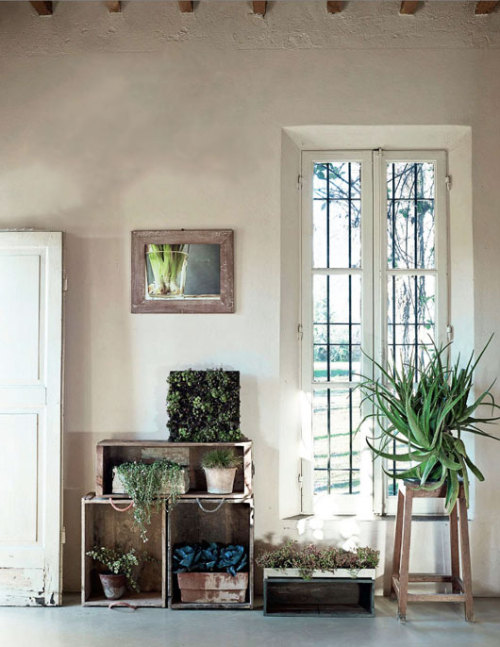 myidealhome:  crates as shelves, + green plants
