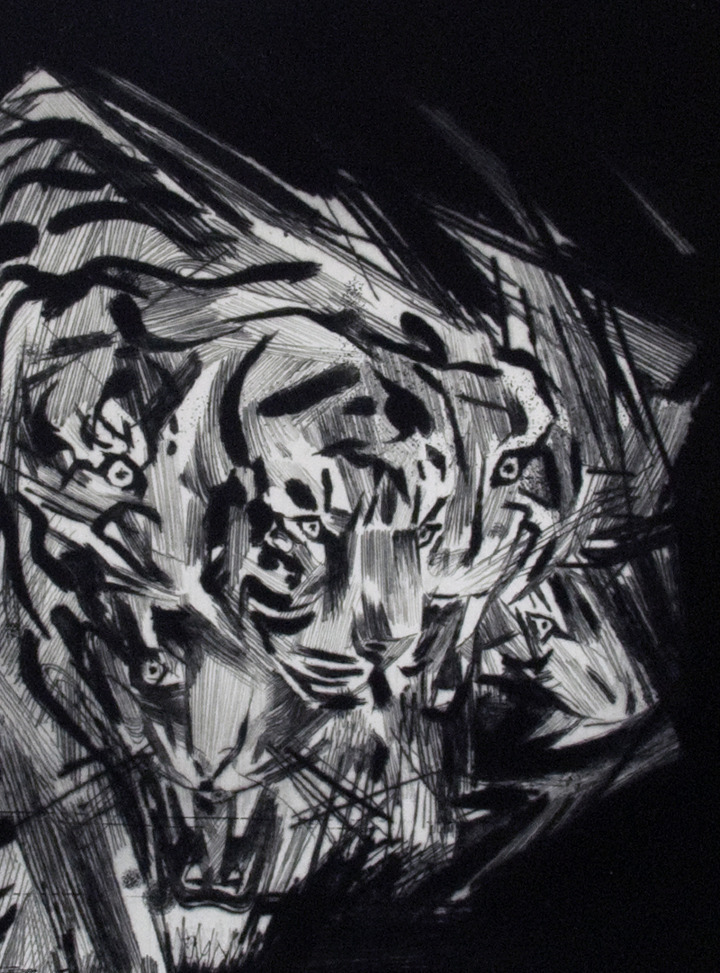 Erik Olson White Tiger, 2011 Ink on Paper, copper plate etching