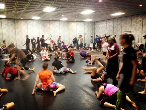 For the first time in History, Ladies are on the TUF Tryout Mat.