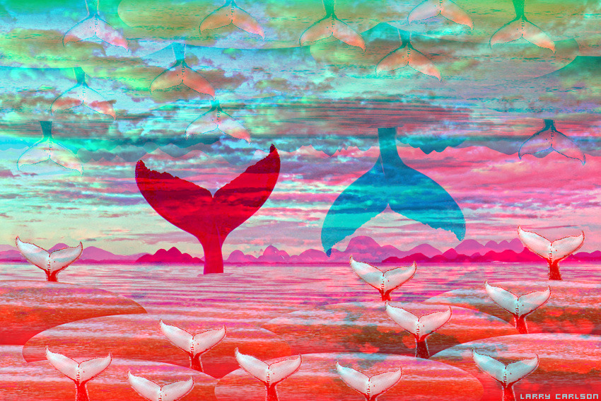 LARRY CARLSON, Whales As Above, digital photography, 2013.