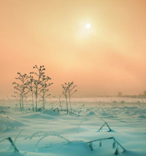 magicalnaturetour:  Pink mist over winter landscape. Photographer: faitak