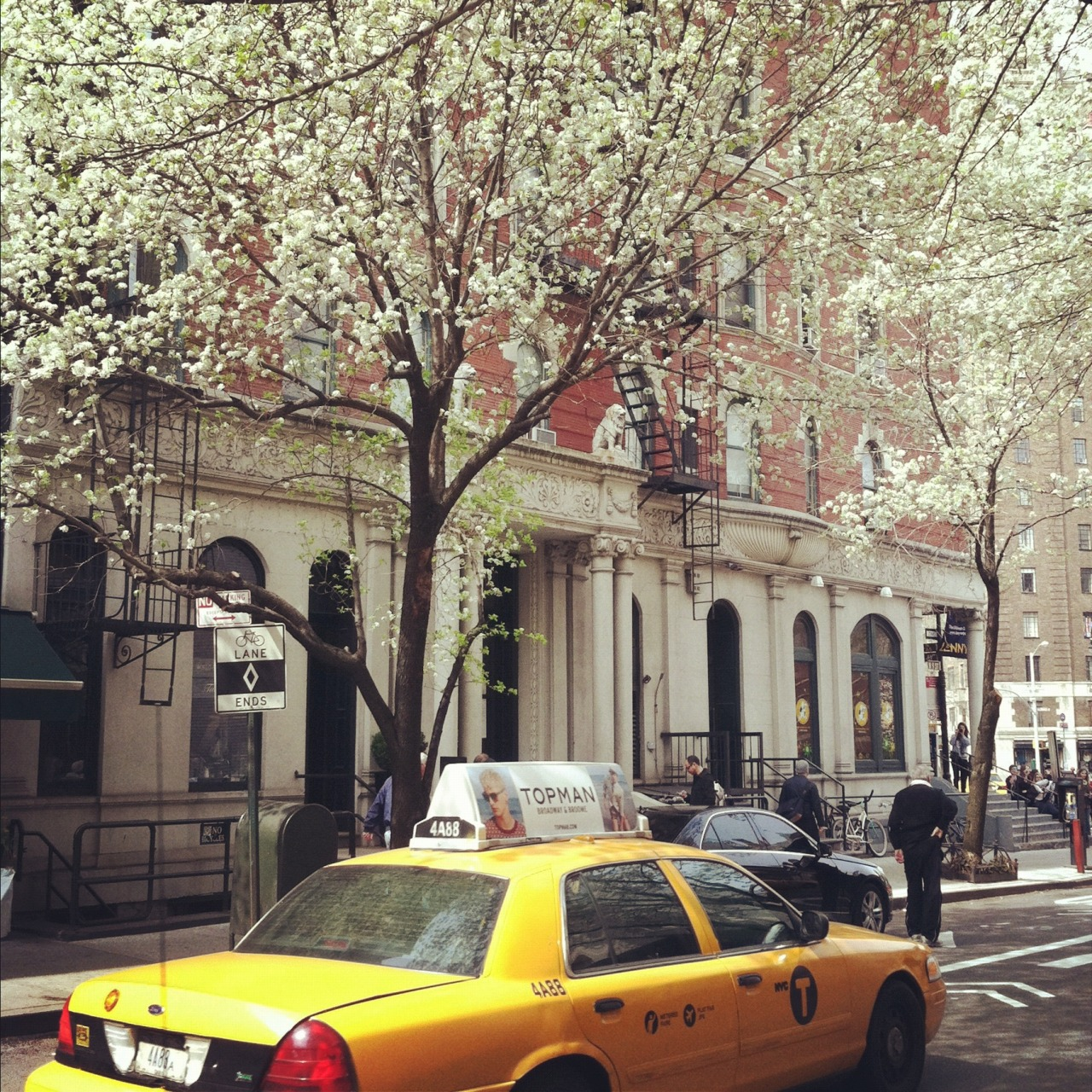 huffposthome:  Spring has finally arrived in New York City!