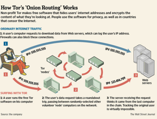 Thanks, WSJ - I totally used this infographic to explain Tor in a meeting today :D