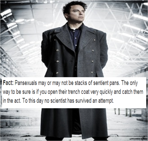 infandomland:  Original textpost by pansexualfacts.Also posted the image onto the Doctor Who page that I'm an admin of: We Love Doctor Who