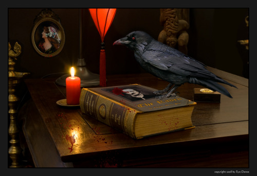 bookporn:  Nevermore by Eye Dance