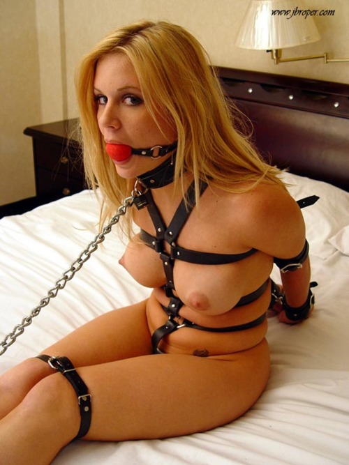 xxxfreebdsm:  Visit XXX Free BDSM for the best bondage pics.