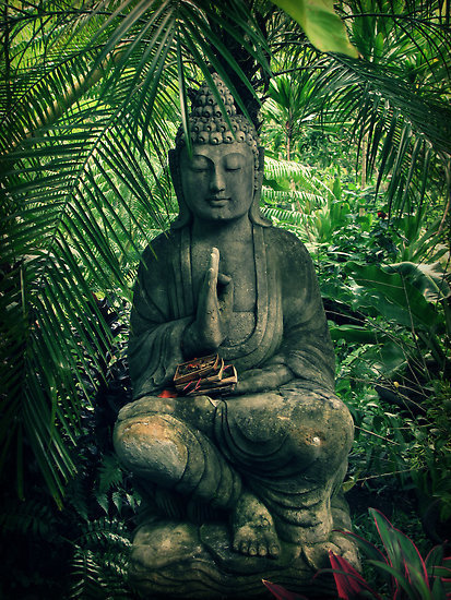 love peaceful nature peace relax now meditation spirituality buddhism buddhist buddha spirit meditate Spiritual awareness Consciousness stillness Pure awareness