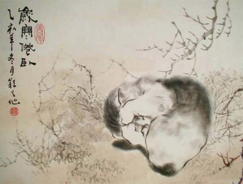 dwellerinthelibrary:  Artist Gu Yingzhi (via Chinese cats)  Our Tim sleeps like this.