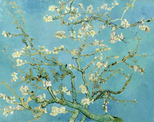 fireseason:  Blossoming Almond Tree by Vincent van Gogh, 1890