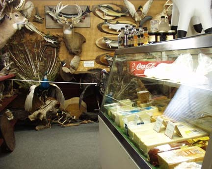 Today I was informed about Wisconsin's Taxidermy and Cheese shops. I WILL be going to some of these. This photo I found online from a store in Mapleton WI was titled 'Cheese Heads.' Thank you for my new fascination Stevie! All of the best things, all in one place. Only in Wisconsin.