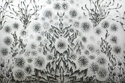 artchipel:  Judith Braun - Diamond Dust (detail). Drawn on wall with fingers dipped in charcoal, 12x48 feet (2013)