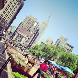 vibemag:  #NYC's feeling like summer today.
