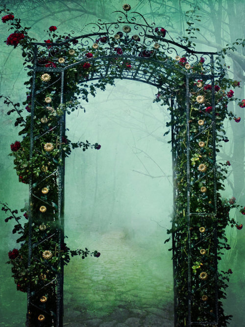 Mystical Portal, The Enchanted Wood photo via toni