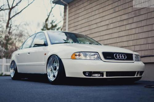 stancespice:   Stanced scene sensations
