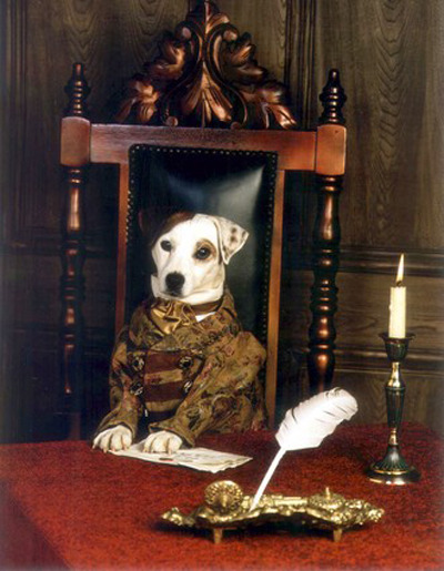 frickyeah1990s:  Wishbone, aka the coolest dog of the 90s