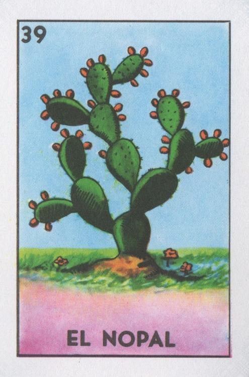 Catcus™ / lonequixote: El Nopal (The Cactus)