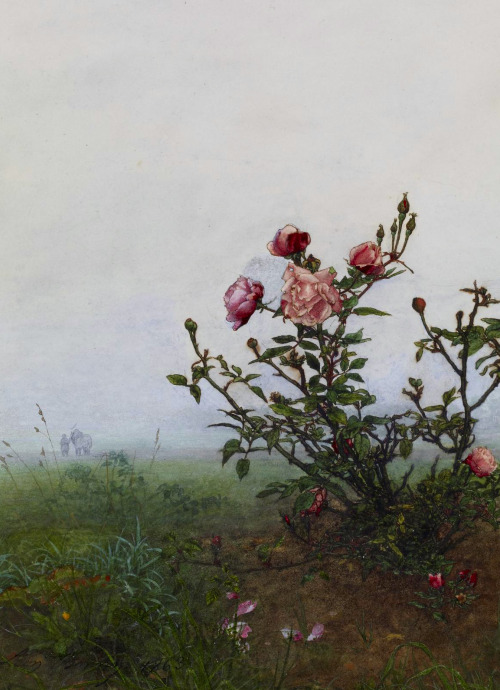 "c0ssette:  Léon Bonvin ""The rosebush true""1863."