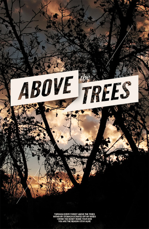 visualgraphic:  Above The Trees