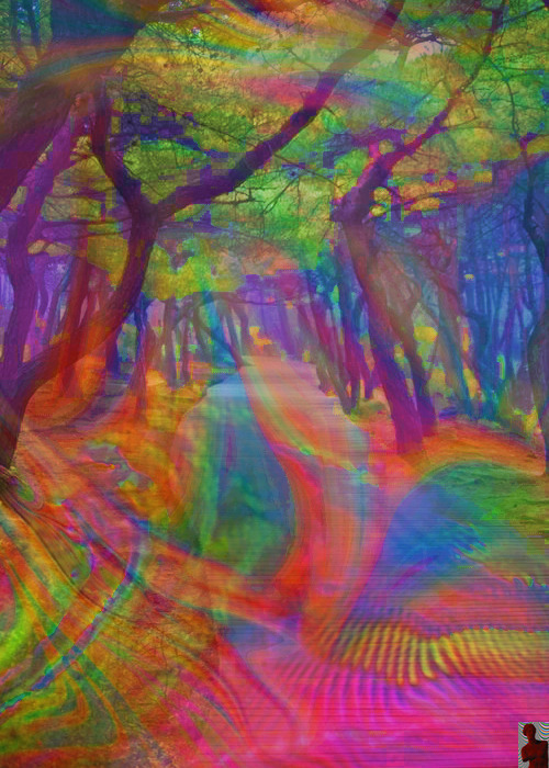 pureblindingcolour:  pureblindingcolour  on your path