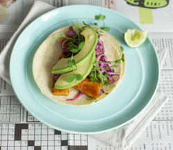 findvegan:  Orange glazed tempeh taco w/ grapefruit slaw + avocado