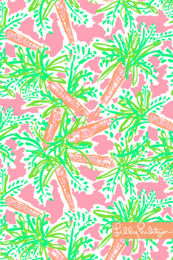 pretty girl cute orange green pink Carrots girly Preppy prep lilly pulitzer nibbles