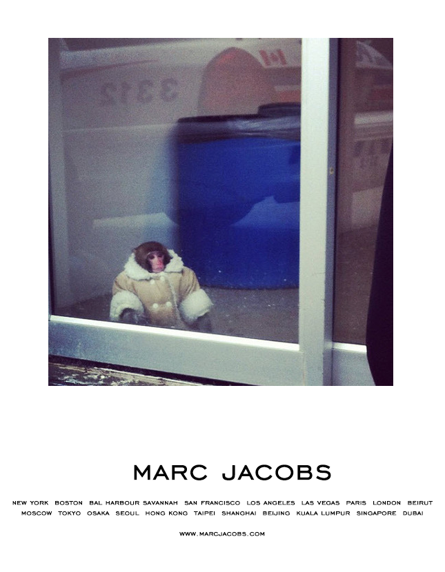 Ok this is the only Ikea Monkey thing I will reblog.