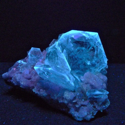 themineralogist:  Goshenite (a colorless variety of Beryl) from China under ultraviolet