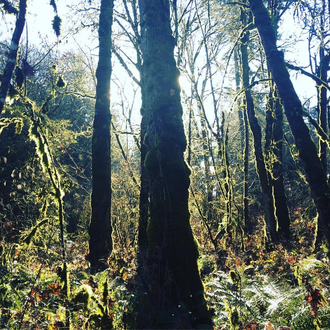 Out hiking… (at Tualatin River National Wildlife Refuge)