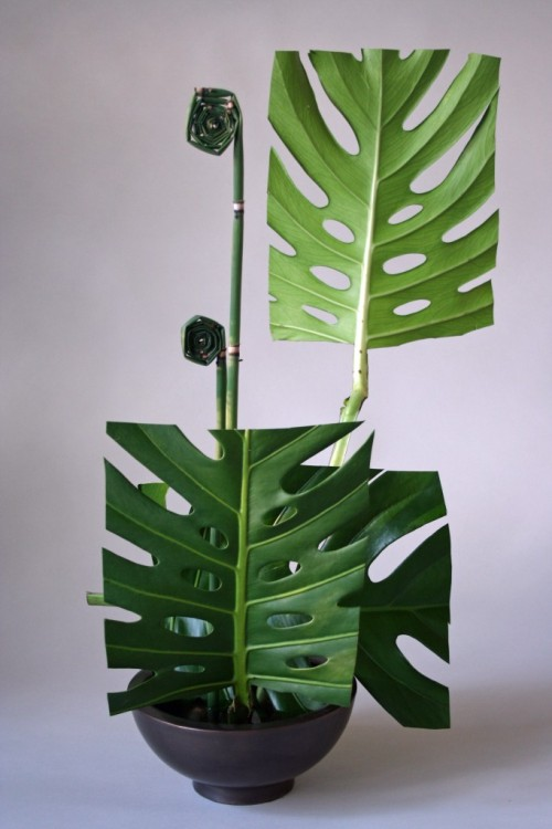 Keith Stanley Ikebana leaf manipulation.(vía 365 Days of Ikebana-Day 26)