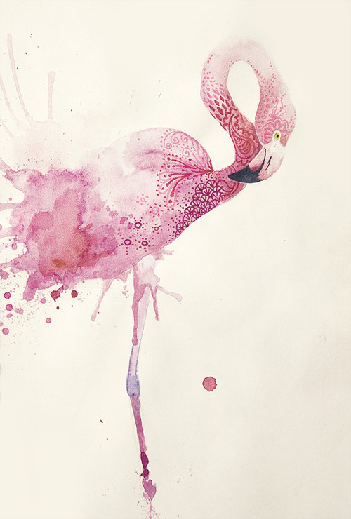 danceabletragedy:  Flamingo by Annelie Solis