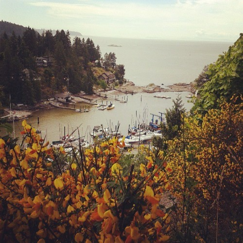 rdayhesus:  Long weekend view #exploreBC  Where is this?!