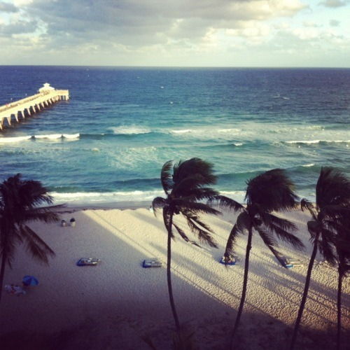 california | via Tumblr on We Heart It. http://weheartit.com/entry/56069274