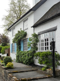 Cottage with Climbing Hydrangeas and a water pump, Brewood, Staffordshire, England. All Original Photography by http://vwcampervan-aldridge.tumblr.com
