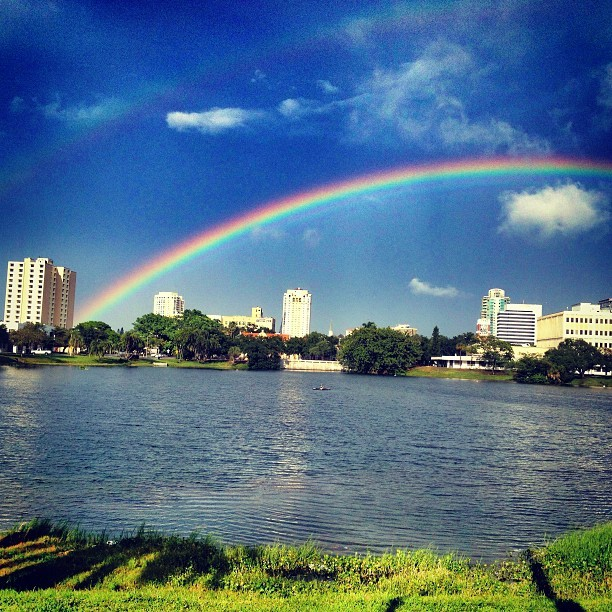 bluelucy:  Taste the Rainbow  St. Pete after the storm.