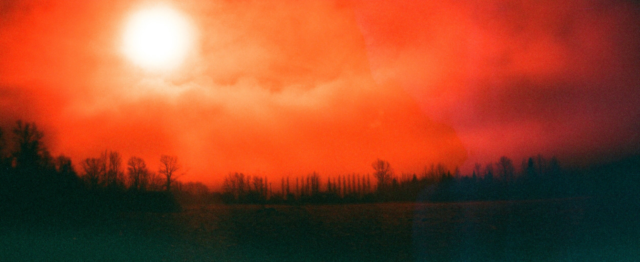 """Washington State"" Redscale"