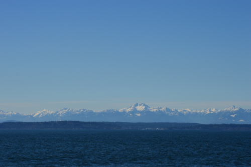 pertempto:  beautiful day in seattle!